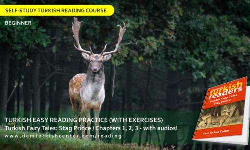 Turkish Reading Practice: Turkish Fairy Tales / Stag Prince 1 (Beginner)