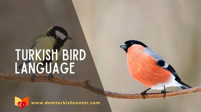 Turkish Bird Language